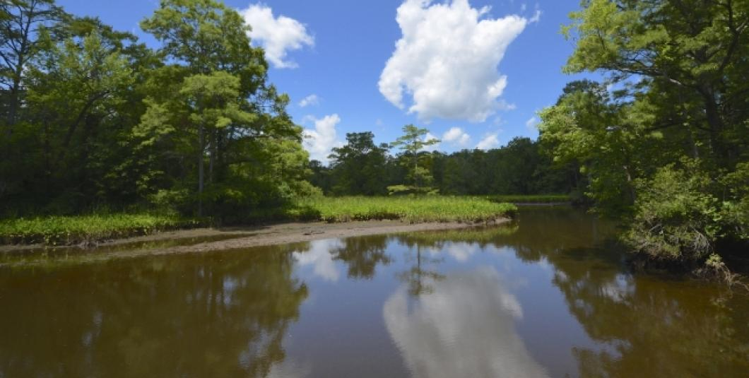 Powhatan Creek