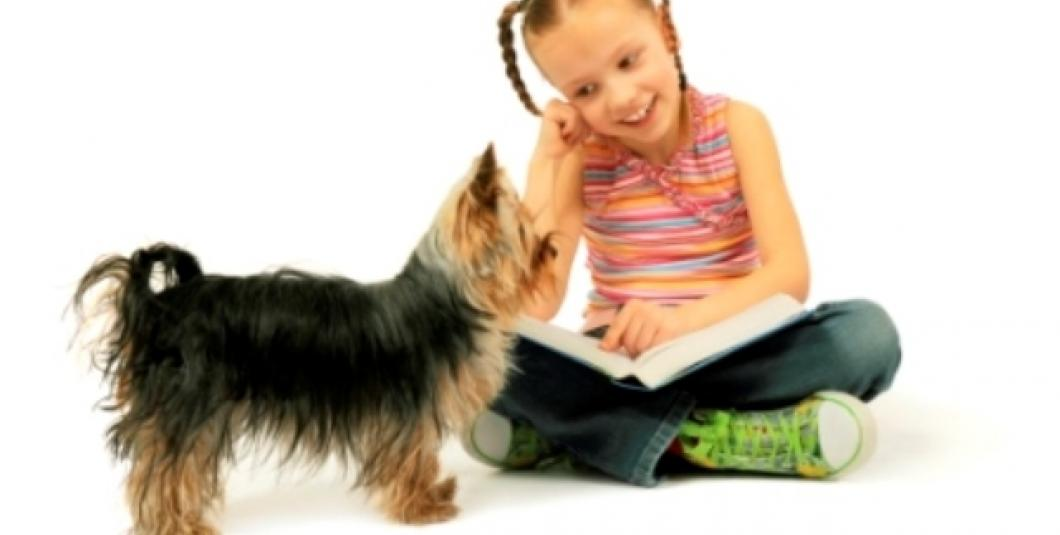 Dogs offer uncritical encouragement to new readers