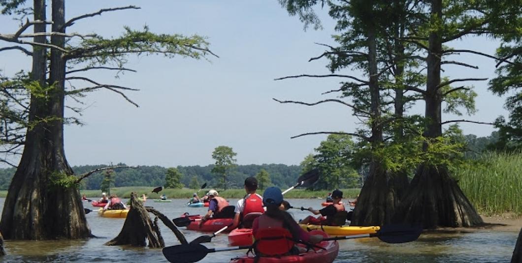 Students paddle in Powhatan Creek!