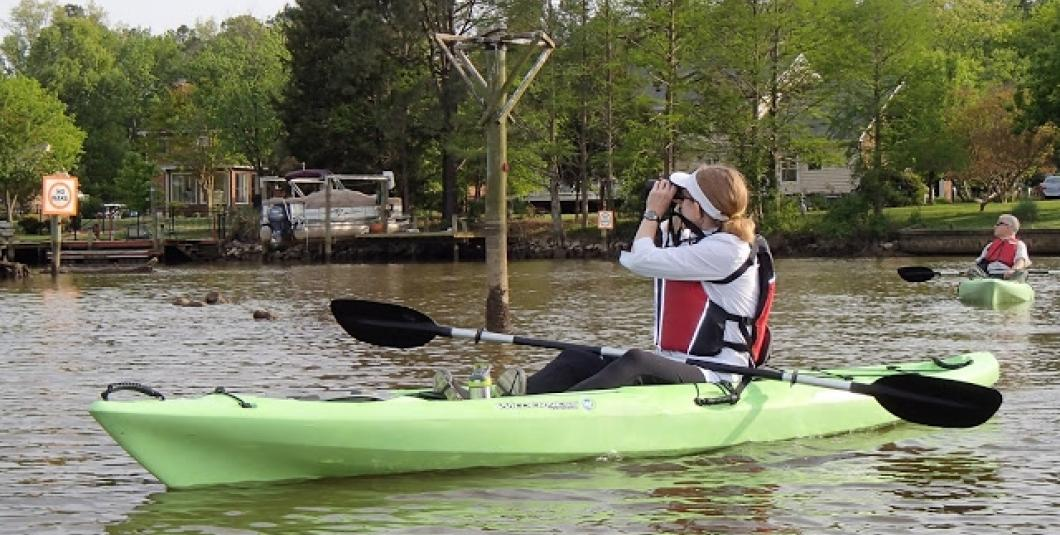 Powhatan Creek is a wonderful place for birders!