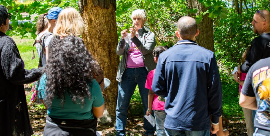 Tree expert Daina Henry, President of the Peninsula Master Naturalists.