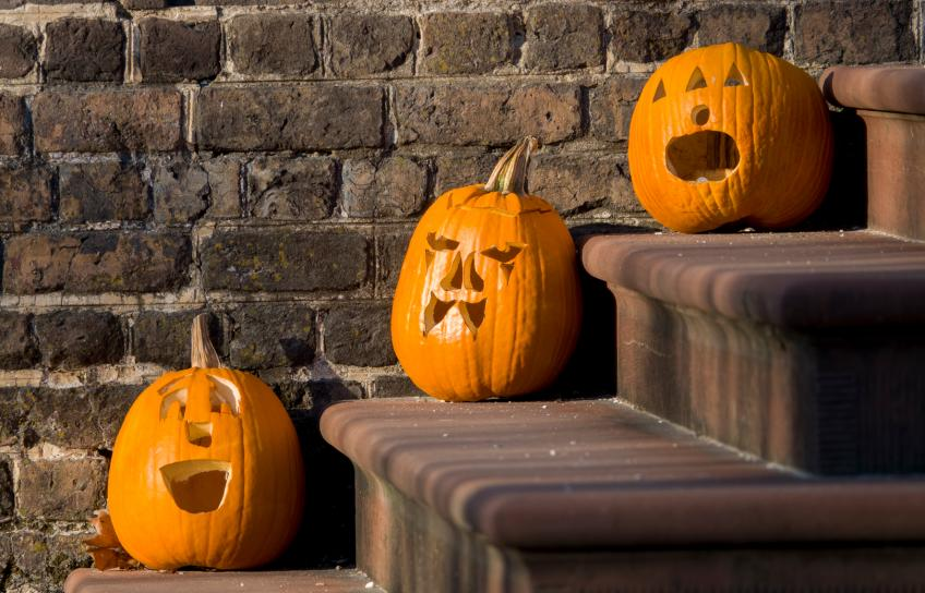 Pumpkins on the Steps in Greater Williamsburg