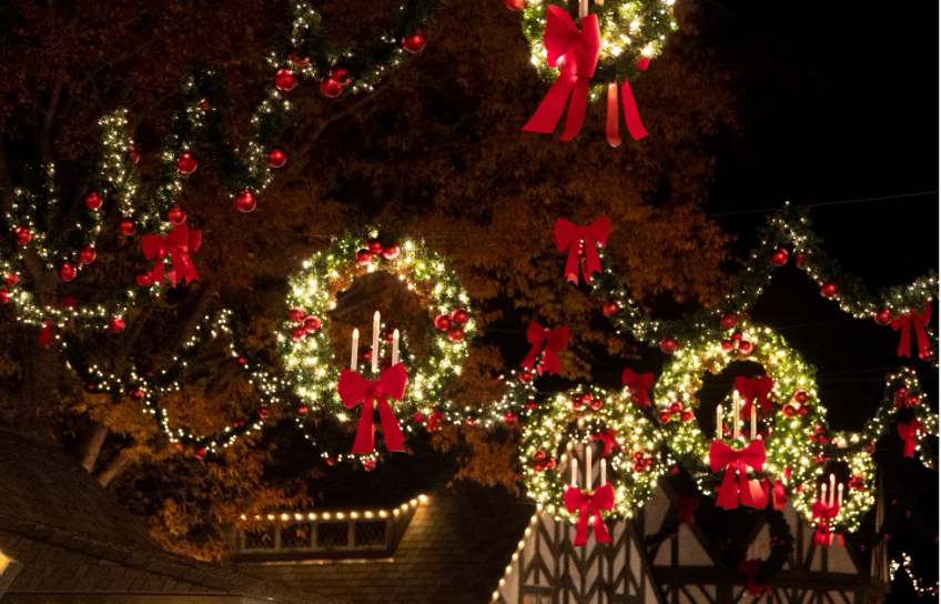 Christmas Wreaths at Night in Busch Gardens