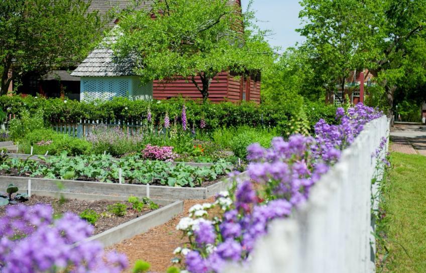 Garden in Williamsburg
