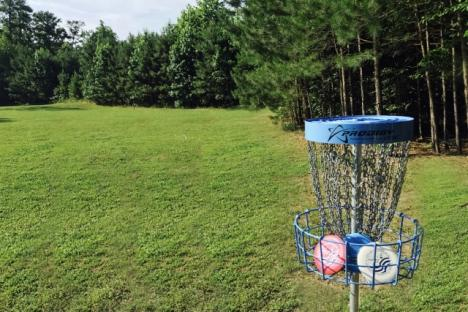 Try Disc Golf
