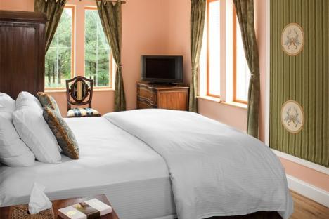 Suite Room- Aquitaine