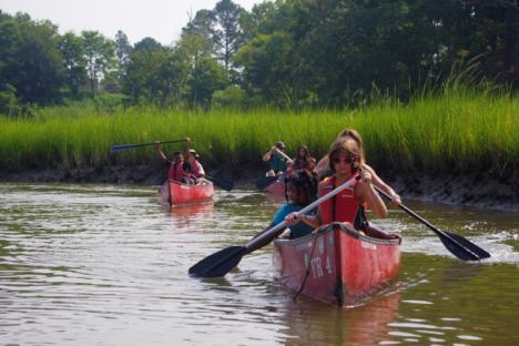 Explore the estuarine marsh on Taskinas Creek