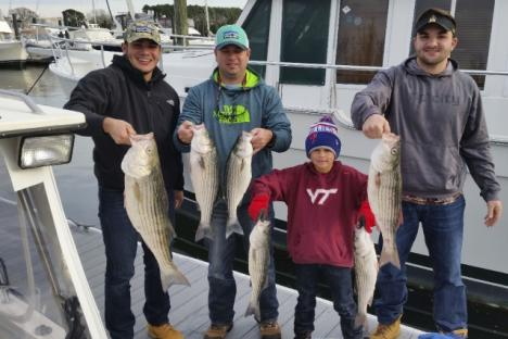 Crew with load of Striped Bass
