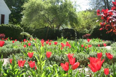 Colonial Williamsburg gardens are a highlight of the tour day.