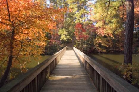 The Noland Trail