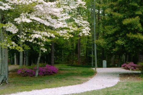 The Noland Trail Park Entrance