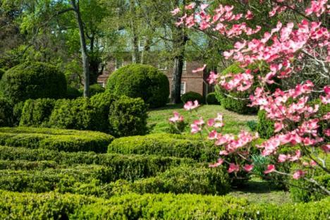 Berkeley's  spring gardens