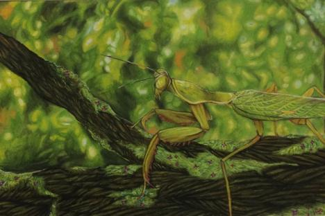 """""""Mantis"""" by Ciao Robinson, Warhill HS"""