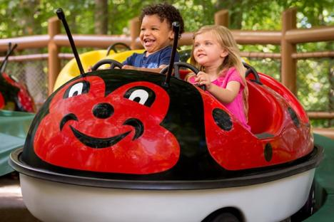 Here's a snapshot of the areas we like to call Kidsiderate® – fun areas that offer rides, shows and attractions built especially for your little ones.
