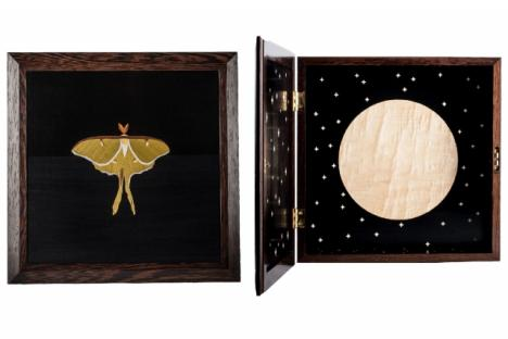 Tom Wessells Luna Moth Cabinet, 2017 Wenge cabinet, dyed and natural veneer marquetry 22 × 22 × 6 in