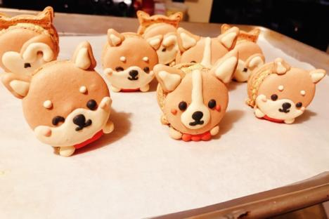 Macarons - © Oishii Restaurant