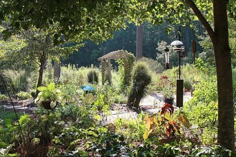 Embedded thumbnail for Williamsburg Botanical Garden